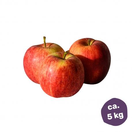 ICH+ Apfelbox